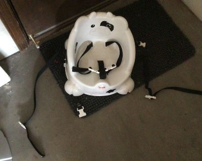 Toddler booster seat with straps