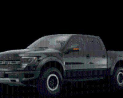 2014 Ford F-150 Raptor