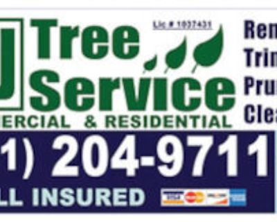 N & J TREE SERVICE, Trimming, Removal, Hauling, Free Est.