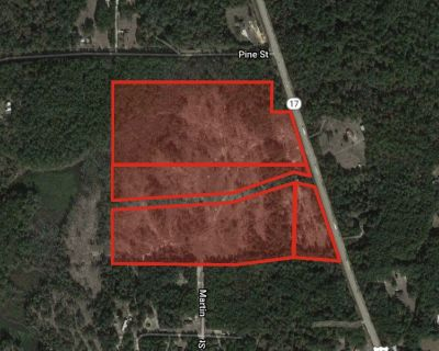 +/- 40 Acres in Mauvilla on Hwy 45