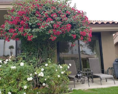 2 bdrm plus den, 2 bath. Overlooking the 8th hole of the Challenge Course w/lake - Palm Desert