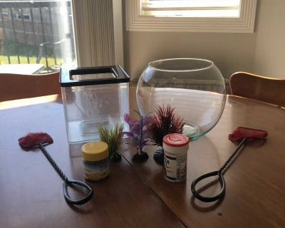 Beta fish bowls with 3 plants, food and treats as well as nets