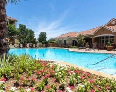 Corrine Drive, Fort Worth, TX 76137 1 Bedroom Apartment