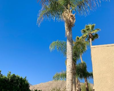 Steps Away from Arenas Rd & Palm Springs Village - Baristo