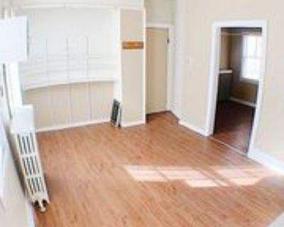 1559 S 9th St #LOWERREAR, Milwaukee, WI 53204 1 Bedroom Apartment