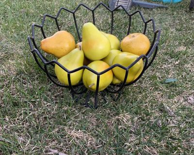Wrought iron bowl with pears