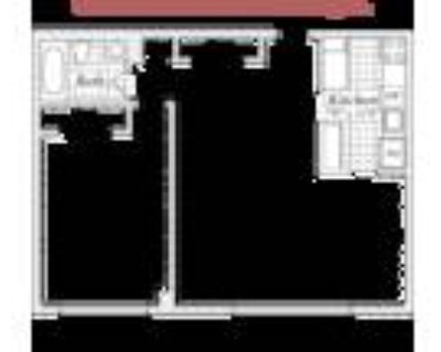 Dominion Towers - One Bedroom/One Bath