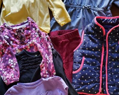 Lot of toddler girl 2T clothes