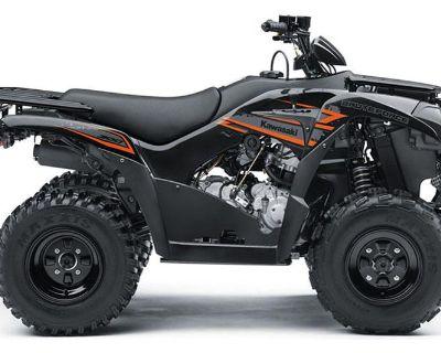 2018 Kawasaki Brute Force 300 ATV Sport Utility Norfolk, VA