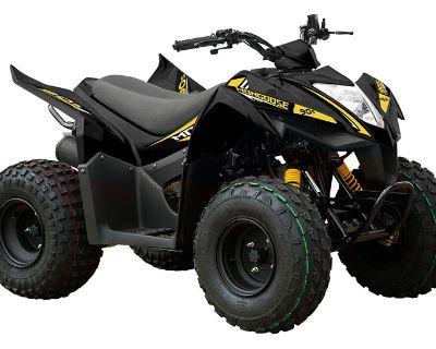 2021 Kymco Mongoose 90S ATV Kids Portland, OR