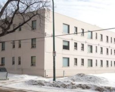 438 Assiniboine Avenue #7, Winnipeg, MB R3C 1 Bedroom Apartment