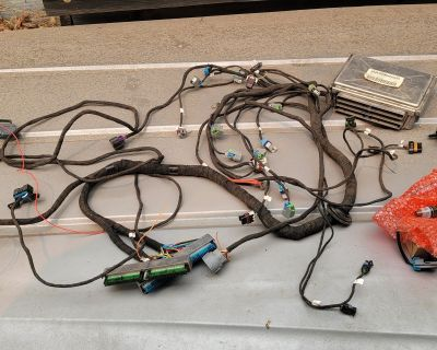 LS wiring harness for sale