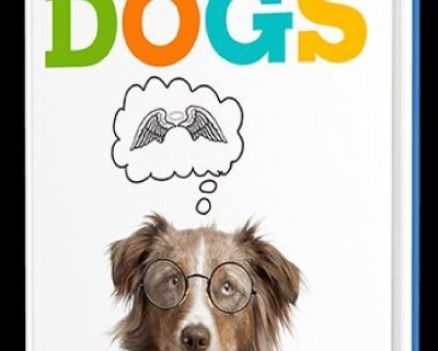 Revealed at last by one of America's top professional dog trainers, a simple training strategies