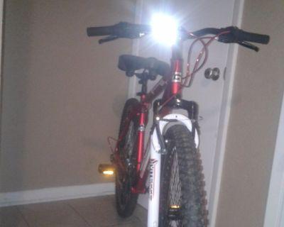 Genesis 29 mountain bike (mens)