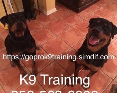 Obedience training programs