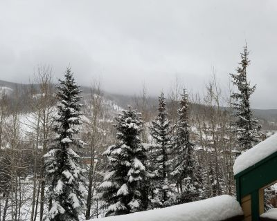 Vail's Best 3 Bedroom Town Home. Park and Play. - Vail