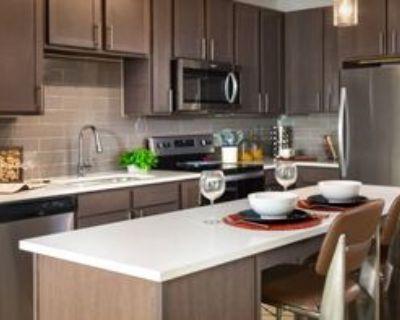 500 Throckmorton Street, Fort Worth, TX 76102 1 Bedroom Condo