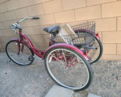 Schwinn Cruiser Bike (3 wheel)