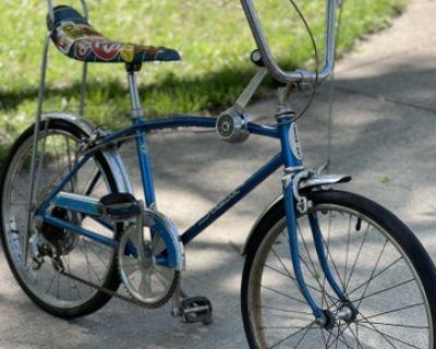 Shwinn 3 speed mussel bike