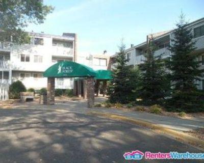 1601 N Innsbruck Dr #305, Columbia Heights, MN 55432 1 Bedroom Condo