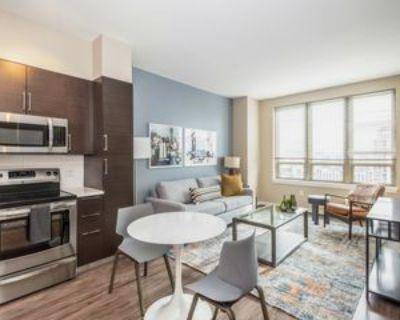 575 12th Rd S #1406, Arlington, VA 22202 1 Bedroom Apartment