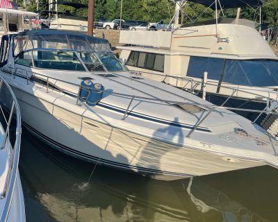 1991 Sea Ray Sundancer 350
