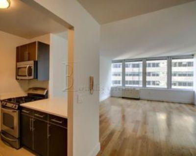 200 Water St #326, New York, NY 10038 1 Bedroom Apartment
