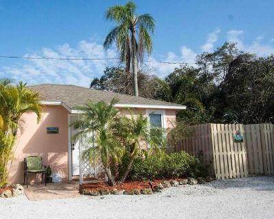 Sweet Conch Cottage- Charming Dog-Friendly Nest In The Heart Of Downtown Dunedin - Dunedin