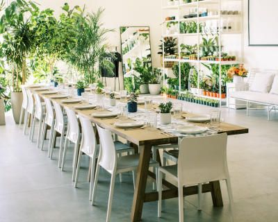 Newly Renovated Minimalist Plant Shop with High Ceilings, Campbell, CA