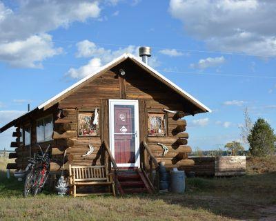 Historic Private Mountain Log Cabin (Sauna, Hot Tub, Fire Pit!) - Livermore