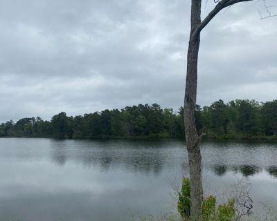 0 Wildwood - 134 Acres - Noyes Lake