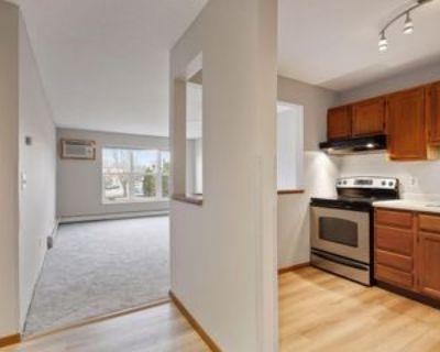 720 3rd Ave Ne #113, Minneapolis, MN 55413 1 Bedroom Condo