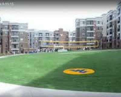 $520 / 1br - REDUCED $200 PER MONTH! University Park-AVAILABLE IMMEDIATELY (442 OAKLAND STREET)