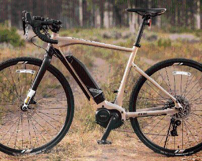 2021 Yamaha Wabash - Medium E-Bikes Orlando, FL