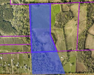 +/- 51.65 Acres For Sale