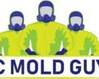KC Mold Guys