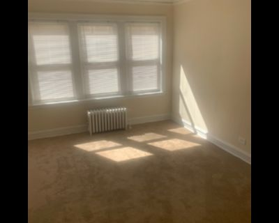 Charming One Bed in Berwyn Cicero-Laundry, Cats OK, Heat Included