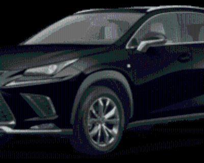 2020 Lexus NX NX 300 F Sport