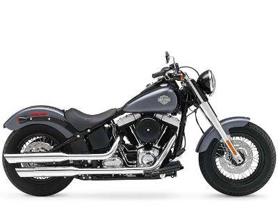 2014 Harley-Davidson Softail Slim Cruiser Loveland, CO