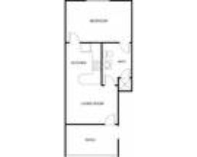 The Regency Apartment Homes - Furnished One Bedroom (Starting at $1300)