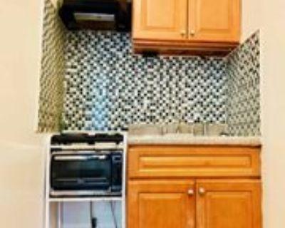 574A Macon Street #2, New York, NY 11233 Studio Apartment