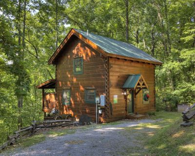 1 Bedroom Romantic and Secluded Cabin Close to Pigeon Forge with Hot Tub - Pigeon Forge