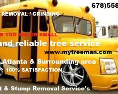 Tree Removal Atlanta Georgia Decatur, Dunwoody GA Tree Removal, Trimming Service In Atlanta Ga