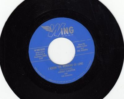 JIMMY CASTOR AND THE JUNIORS ~ I Know The Meaning Of Love*Mint-45 !