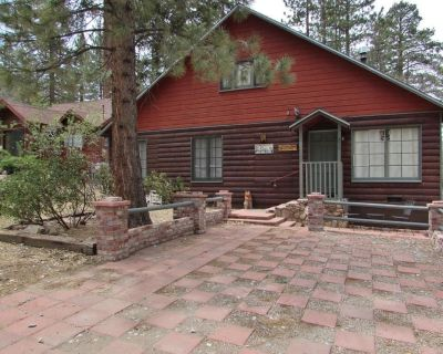 Cute, Cozy, Pet Friendly Cabin with a great location, back yard for sledding and private hot tub.... - Big Bear Lake