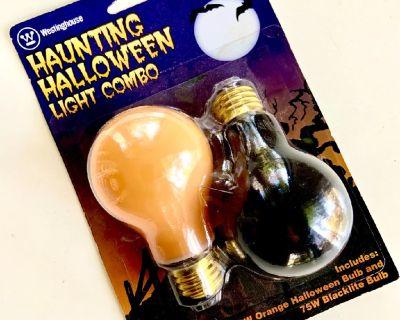 NEW Haunting Halloween Light Combo