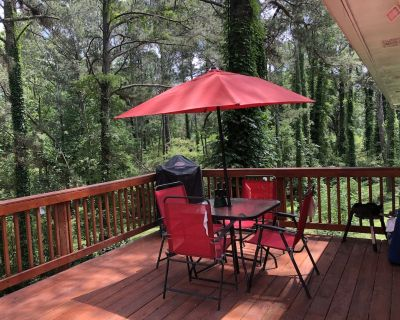 Peaceful Place 1 for Relaxing Weekends and Extended Stays - Candler-McAfee
