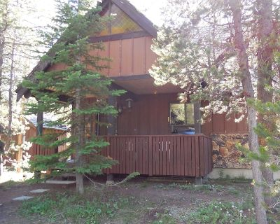 Eagles Rest Cabin*Fire Pit*TV/Dish*Short drive to Macks Inn & West Yellowstone - Island Park