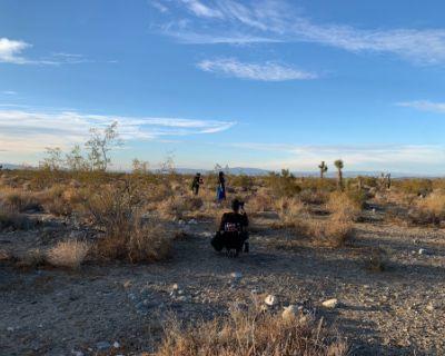 5 Acres of Scenic Desert Land!, Llano, CA