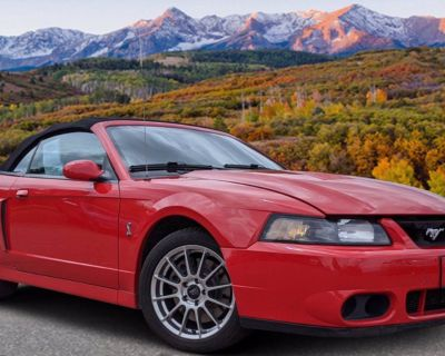2004 Ford Mustang SVT Cobra